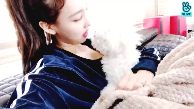 Watch and share Hulk Vlive GIFs by Ahrigato on Gfycat