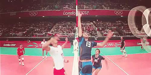 Watch and share Poland Nt GIFs on Gfycat