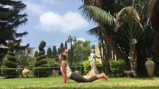 Watch Recording her yoga practice (reddit) GIF on Gfycat. Discover more AnimalsBeingJerks, AssPotatoCucumberDog GIFs on Gfycat