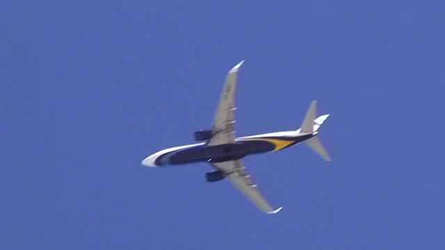 Watch and share 0246 Airplanepalmtree GIFs by muse3104 on Gfycat
