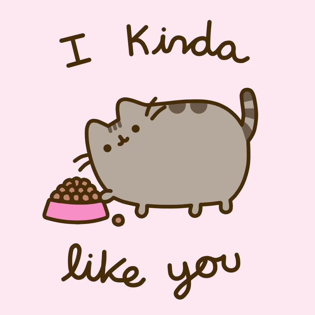 cat, cats, happy valentines day, pusheen, pusheen cat, pusheen the cat, valentines day, 💖Happy Valentine's Day!💖 GIFs