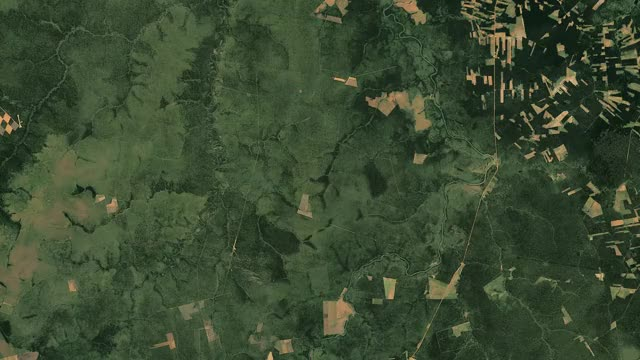 Watch and share Brazil Deforestation GIFs on Gfycat