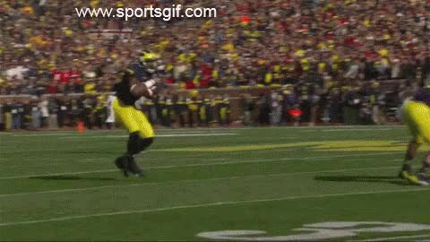 Watch and share Devin Funchess Hurdle GIFs on Gfycat