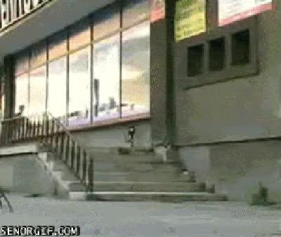 Watch and share Skateboarding Fai Win Skateboarding Fai GIFs on Gfycat