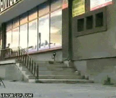 skateboarding fai win skateboarding fai GIFs
