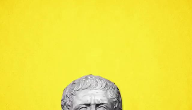 Watch and share PHILOSOPHY - Plato GIFs on Gfycat