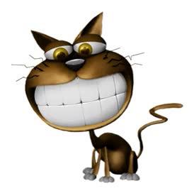 Watch and share Gato Riendose GIFs on Gfycat