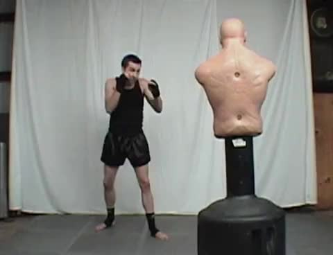 Brazilian Kick / Downward Round Kick Tutorial | Kickboxing MMA Taekwondo GIFs