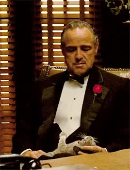 Watch and share Marlon Brando GIFs and The Godfather GIFs on Gfycat