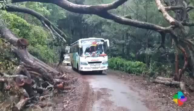 Watch and share Kerala Tourist Bus Adventure Drive GIFs on Gfycat