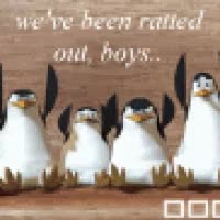 Watch and share Madagascar Penguins GIFs on Gfycat