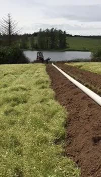 Watch and share Installing Irrigation Pipe (reddit) GIFs on Gfycat