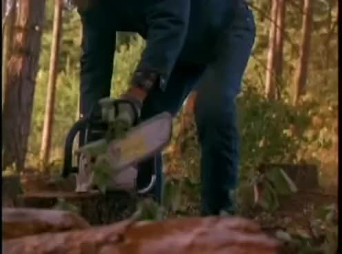 Watch Chuck Norris Fighting Loggers GIF on Gfycat. Discover more chuck, norris GIFs on Gfycat