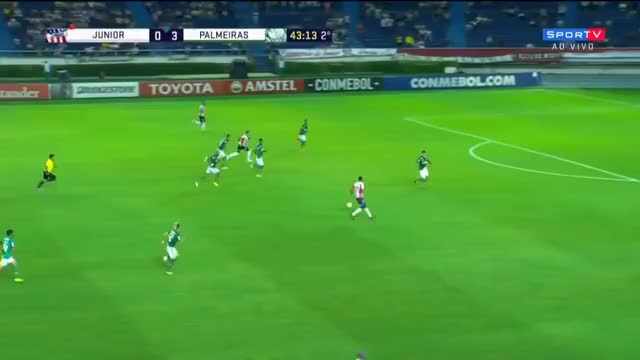 Watch and share Palmeiras GIFs on Gfycat