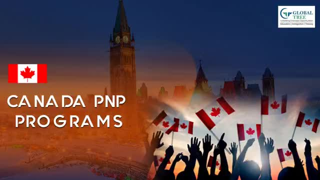 Watch and share Canada Pnp Program GIFs by Study Abroad & Immigration on Gfycat