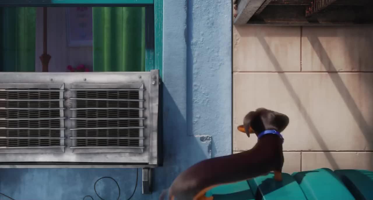 SwiggitySwootyGifs, dachshund, secretlifeofpets, Swiggity Swooty I'm Climbing for that Booty GIFs