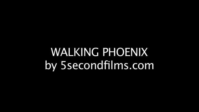 Watch Walking Phoenix GIF on Gfycat. Discover more 5SecondFilms, 5sf, Cocaine, Joaquin, Line, Still, beard, crazy, drugs, films, here, phoenix, second, walking, wtf GIFs on Gfycat
