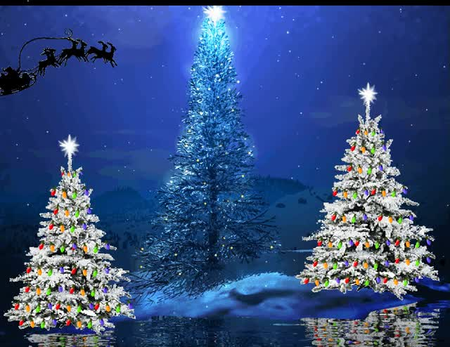 Watch and share Santa Sleigh Flying Over Christmas Trees GIFs on Gfycat