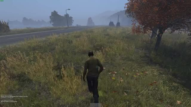 Watch and share Dayz GIFs by pluxar on Gfycat