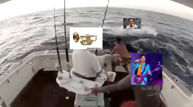 Boat Metaphor