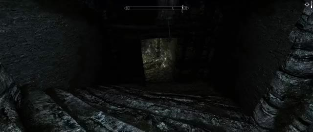 Lydia! Watch out for the    Never mind (Skyrim 21:9) GIF by