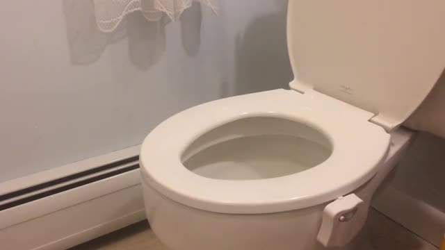 Watch and share Toilet Light GIFs on Gfycat