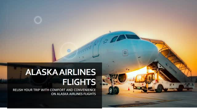 Watch and share Get On Alaska Airlines Flights To Experience Comfort GIFs by Airlines Reservations on Gfycat