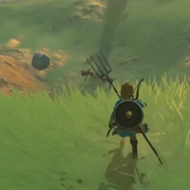 Watch and share Breath Of The Wild GIFs and Zelda GIFs by Talodin on Gfycat