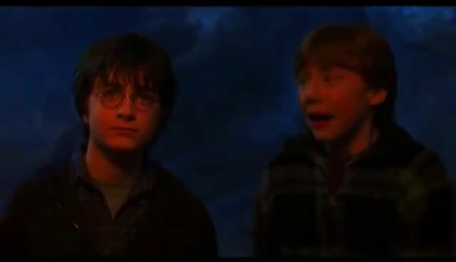 ron weasley, spiders, spiders GIFs